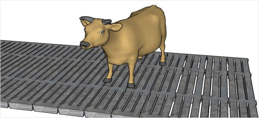 Spalkeplank til gulv i fjøs og landbruk